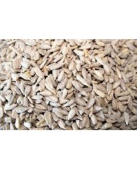 Fresh Bulk Raw Sunflower Seed (1kg)